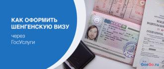 Можно ли оформить шенгенскую визу через Госуслуги