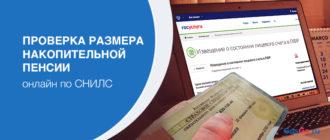 Проверяем размер накопительной пенсии по СНИЛС онлайн в 2019 году