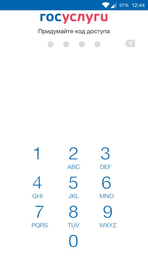 ввод пароля от портала госуслуг