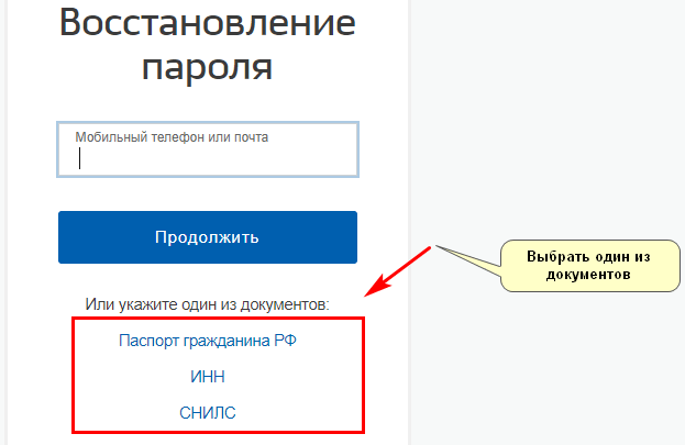 вид документа для восстановления пароля госуслуг