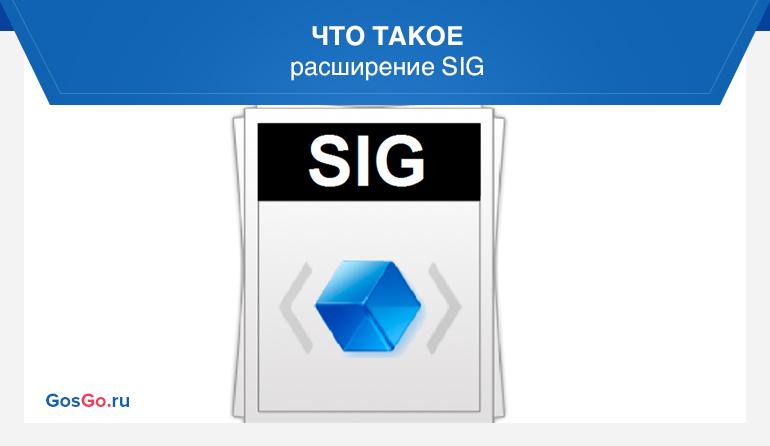 Что такое расширение SIG