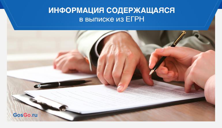 Информация содержащаяся в выписке из ЕГРН