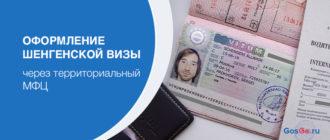 Оформление шенгенской визы через территориальный МФЦ