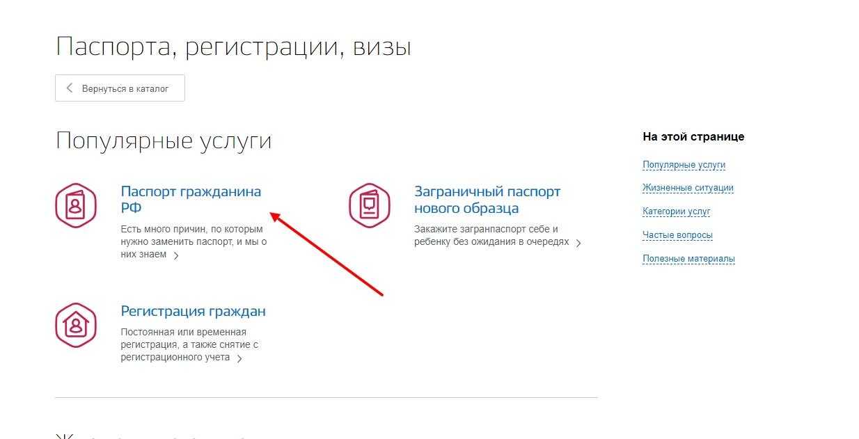 """Открыть категорию """"Паспорт РФ"""""""
