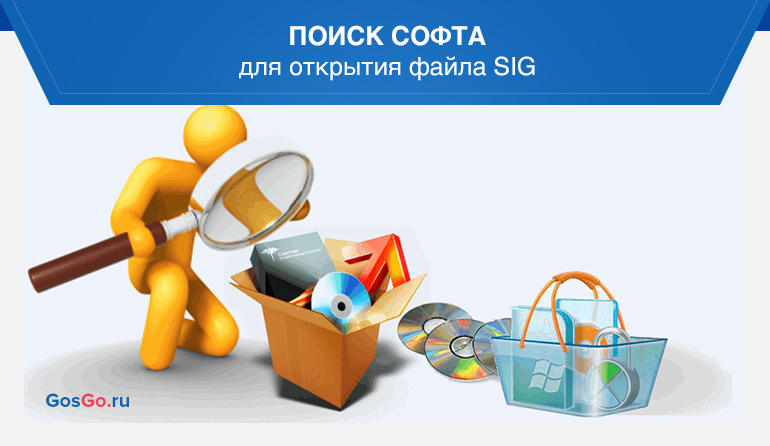 Поиск софта для открытия файла SIG