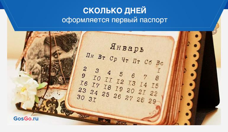 Сколько дней оформляется первый паспорт