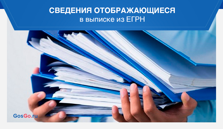 Сведения отображающиеся в выписке из ЕГРН