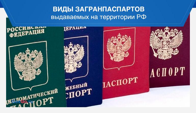 Виды загранпаспартов выдаваемых на территории РФ