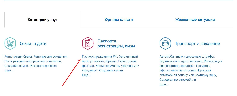 """Выбор категории госуслуг """"Регистрации, визы и паспорта"""""""