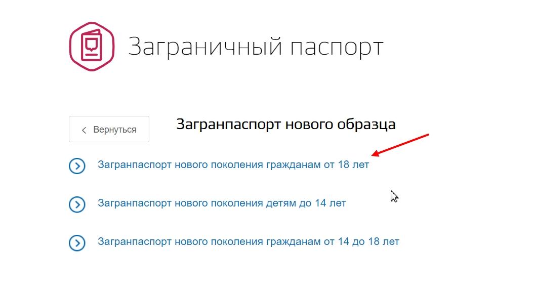"""Выбрать """"Загранпаспорт нового поколения гражданам от 18 лет"""""""