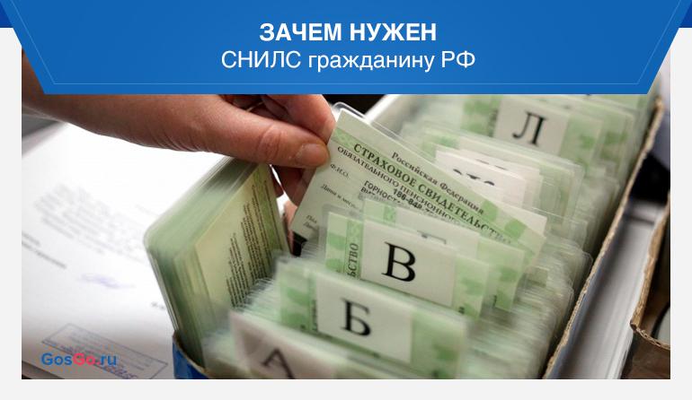 Зачем нужен СНИЛС гражданину РФ