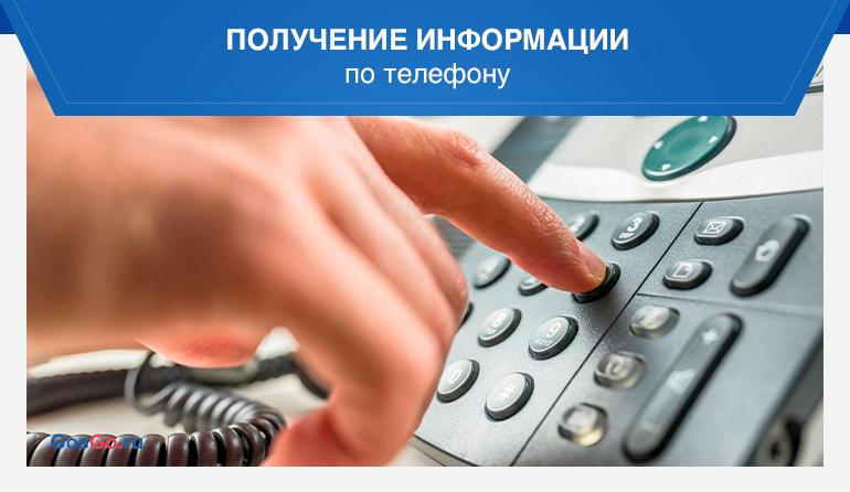 Получение информации по телефону