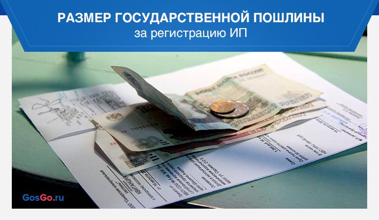 Размер государственной пошлины за регистрацию ИП