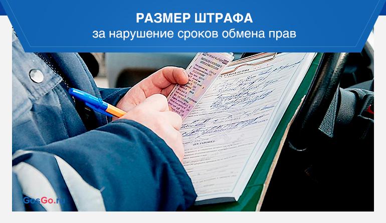 Размер штрафа за нарушение сроков обмена прав