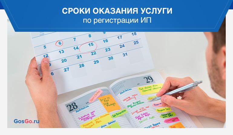 Сроки оказания услуги по регистрации ИП