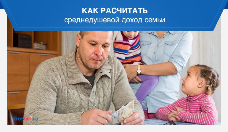 среднедушевой доход семьи расчет