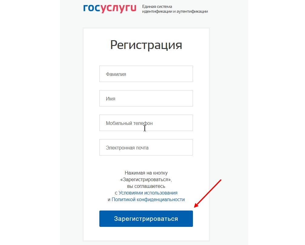 Заполнение регистрационной формы госуслуг