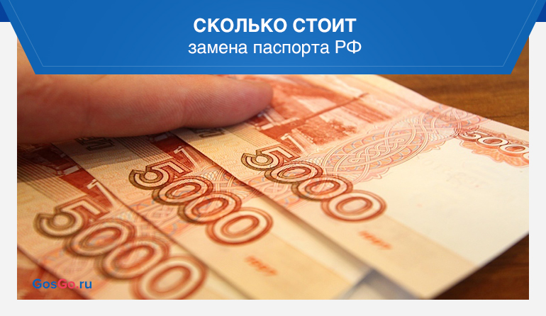 Сколько стоит замена паспорта РФ