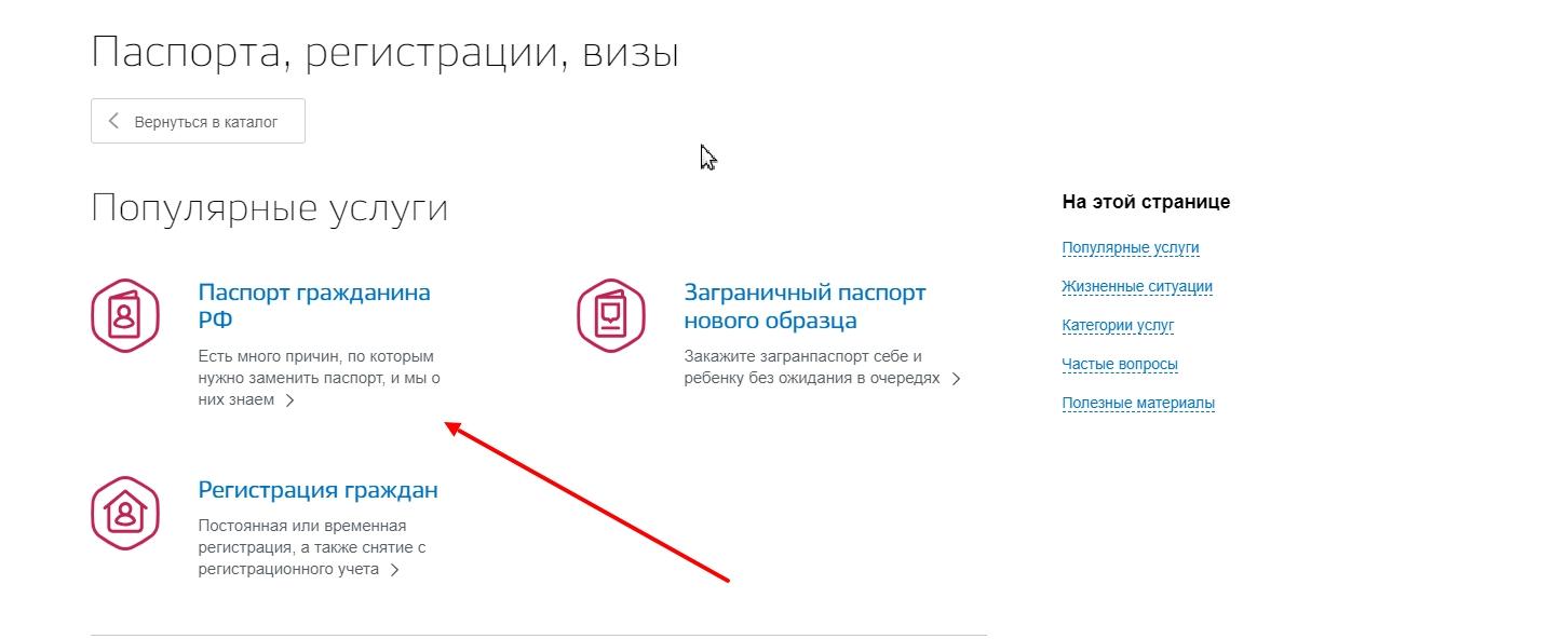 """Выбрать """"Паспорта гражданина РФ"""""""