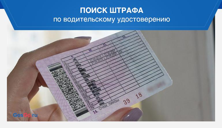 Поиск штрафа по водительскому удостоверению