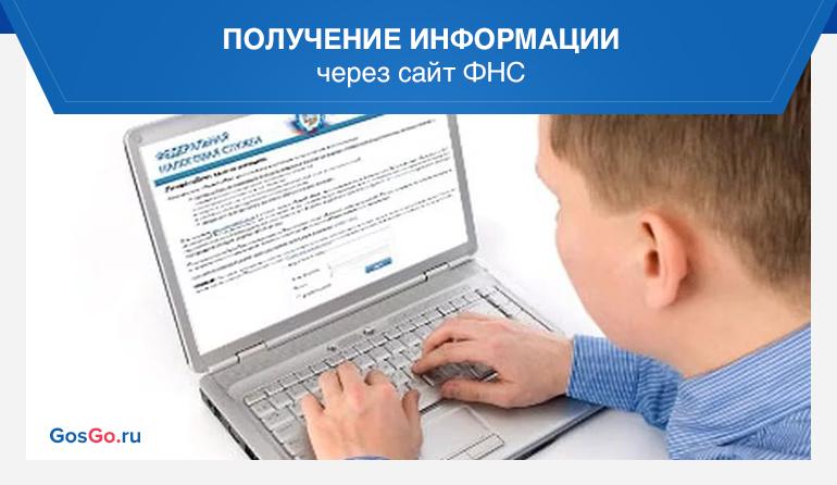 Получение информации через сайт ФНС
